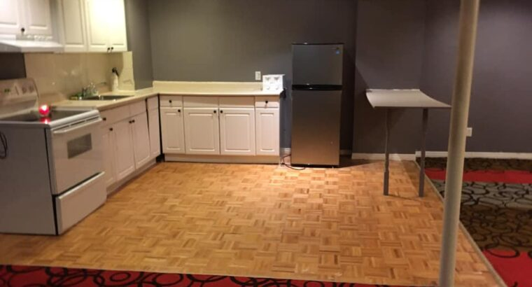 2 bedrooms basement Apt. For rent in Richmobd Hill